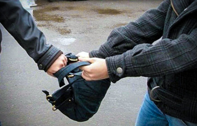 Нижегородские полицейские раскрыли грабеж